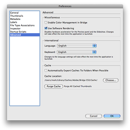 Enabling software rendering in the preferences for Adobe Bridge CS3