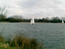 Sample image taken outdoors with a the VTech Kidizoom